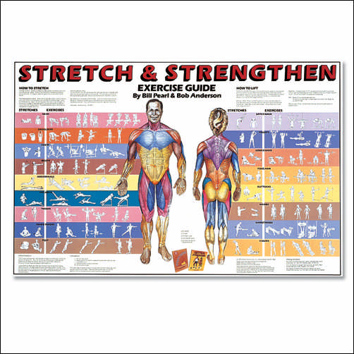 STRETCH & STRENGTHEN CHART LAMINATED