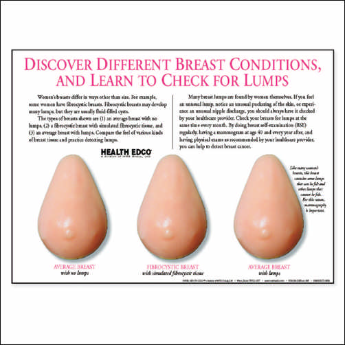 MULTI-TYPE BREASTS MODEL (BEIGE)