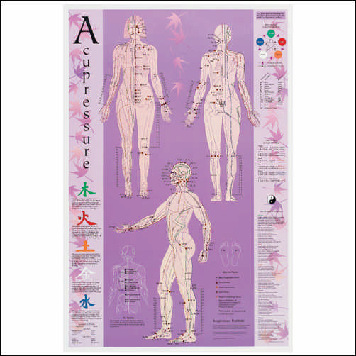 ACUPRESSURE POINT REFERENCE LAMINATED CHART