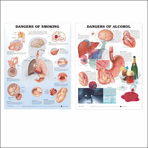 DANGERS OF ALCOHOL - FLEXIBLE LAMINATION