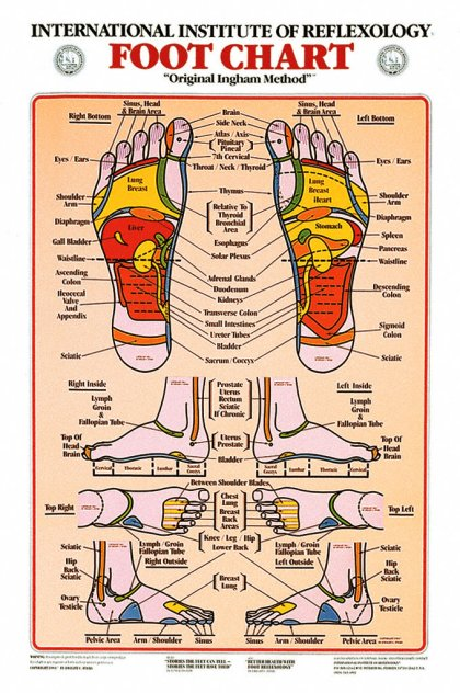 FOOT REFLEXOLOGY CHART, LAMINATED