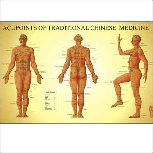 ACUPOINTS OF TRADITIONAL CHINESE MEDICINE - MALE