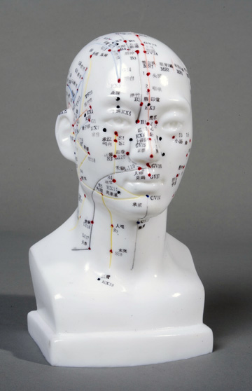 Male Head Acupuncture Model