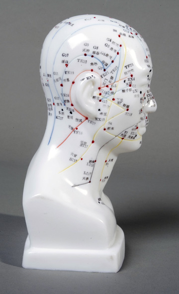 Male Head Acupuncture Model - Click Image to Close